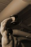 Pure Muscle 2. Sepia bodybuilder in the gym performing one arm tricep press Royalty Free Stock Image
