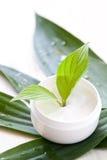 Pure natural cosmetics Royalty Free Stock Photo