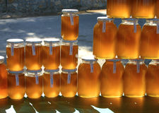 Pure natural honey. Sun light coming through glass jars filled with pure natural honey royalty free stock images