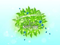 Pure Nature Royalty Free Stock Photo