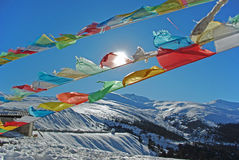 Pure nature, pure religion. The Tibetan buddhism's prayer flag float under strong sunshine at the summit of Baima snow-capped mountain Stock Images