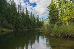Pure river Stock Photo