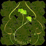 Pure parsley with label Stock Images