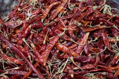 Pure red whole dried chillies pepper in Thailand local market. Use for cooking spicy food and herb Royalty Free Stock Image