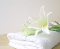 Pure Spa Health. Image of a high key pale white towel, lilly and tones to give impression of pure and simple natural beauty and spa treatment ingredients Royalty Free Stock Photo