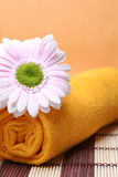 Pure spa health. The image of bright faintly yellow towel, lilly and tones to make impression of pure and simple natural beauty and components of processing of a Royalty Free Stock Image