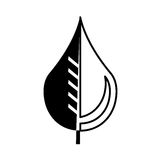 Pure water drop with leaf emblem Stock Image