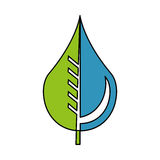 Pure water drop with leaf emblem Royalty Free Stock Image
