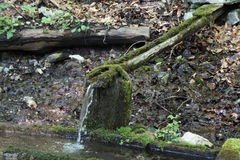 Pure water flowing n dropping from wood pipe. Pure water flowing n dropping from wooden pipe against mountain background Royalty Free Stock Photo