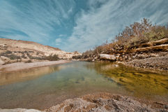 The Pure Water. At the natural reserve Beit Avdat. Israel Stock Images