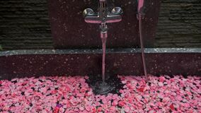 Spa, warm water is pouring into the bath with rose petals