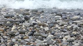 Pure water waves moving on multicolored polished stones stock footage