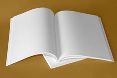 Pure white book. Opened book and white pages Royalty Free Stock Photo