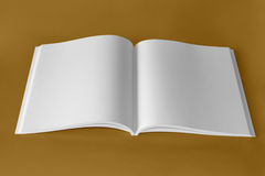 Pure white book. Opened book and white pages Royalty Free Stock Image