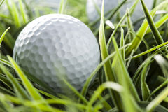 Pure White Golfball on green grass Stock Photo