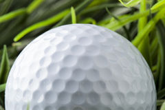 Pure White Golfball on green grass Royalty Free Stock Photo