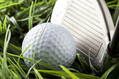 Pure White Golfball on green grass royalty free stock photos
