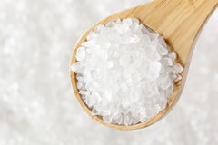 Pure White Sea salt for cooking Royalty Free Stock Images