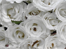 Pure white wedding roses. Close up shot of a wedding bouquet containing strictly pure white roses Stock Photos
