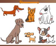 Purebred cartoon dog characters set royalty free illustration