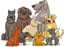 Purebred dog characters group Royalty Free Stock Photos