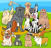 Purebred dogs cartoon characters group. Cartoon Illustration of Purebred Dogs Animal Characters Group Stock Image