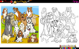 Purebred dogs coloring book Stock Photos