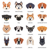 Purebred Dogs Faces Icon Set royalty free illustration