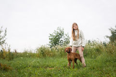 Purebred hungarian setter portrait with girl Royalty Free Stock Photography