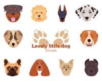 Purebred trakeny psy, ikony również zwrócić corel ilustracji wektora Obrazy Stock