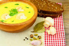 Puree Cream Soup of Zucchini with Mushrooms Royalty Free Stock Photos