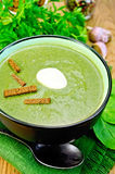 Puree from spinach with garlic and croutons Royalty Free Stock Photography