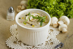 Pureed mushroom soup. Mushroom cream soup with herbs and spices Stock Images