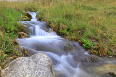 Purely clean mountain stream Royalty Free Stock Photo