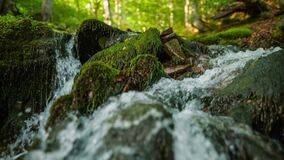 Purest mountain river in the forest. Stream of
