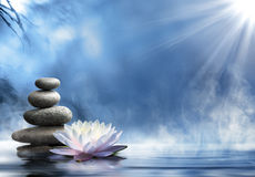 Pureza da massagem do zen Fotografia de Stock Royalty Free