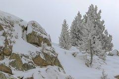Pureza de la montaña bañada en nieve foto de archivo