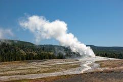 Purgando o vapor: o geyser no parque nacional de Yellowstone entra em erupção fotos de stock
