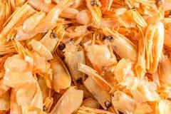 Purification de la crevette mangée Restes à émettre Plan rapproché images libres de droits