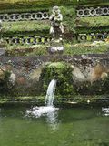 Purification fountain in a Bali temple invaded by moss, Indonesia. All temples in Bali have a multitude of ancient stone statues. In this photo taken in a temple stock images