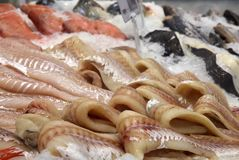 Purified cod on ice. Department of fish and seafood in the supermarket. Purified cod on ice Royalty Free Stock Image