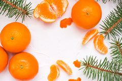 Purified mandarin slices, whole mandarins and fir branches. On a white table. Top view Stock Image