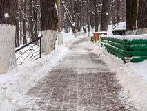 Purified od śnieżnej ścieżki w parku fotografia stock