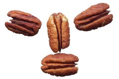 Purified pecans Stock Photos