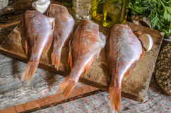 Purified red grouper on the cutting wooden board Stock Photography