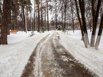 Purified from the snow path in the park Royalty Free Stock Photography