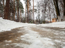 Purified from the snow path in the park. During the day Stock Image