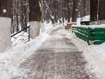 Purified from the snow path in the park Stock Photography