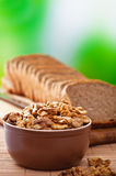 Purified walnuts, rye bread Stock Image