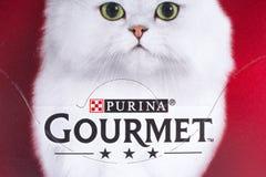 Purina食家猫食 免版税库存照片